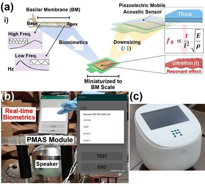 (a) Schematic illustration of the basilar membrane-inspired flexible piezoelectric mobile acoustic sensor (b) Real-time voice biometrics based on machine learning algorithms (c) The world's first commercial production of a mobile-sized acoustic sensor